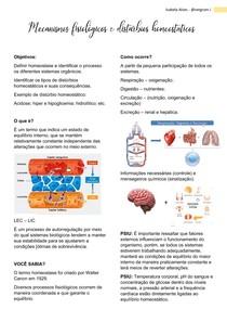 Mecanismos fisiológicos e distúrbios homeostáticos e hemodinâmicos