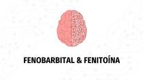 Fenobarbital e Fenitoína