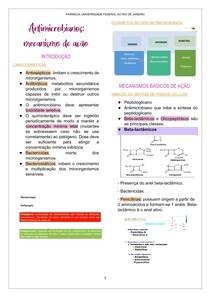 Antimicorbianos - mecanismo de ação