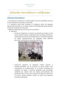 Acúmulos intracelulares e calcificações