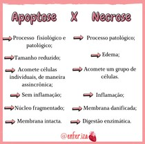 Diferença entre apoptose e necrose
