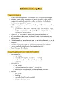 Sistema muscular (1)
