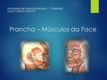 Prancha 03 - Músculos da Face - Neuroanatomia