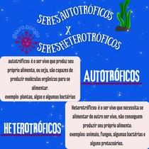 seres autotróficos e heterotróficos