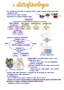 Eletrofisiologia do coração