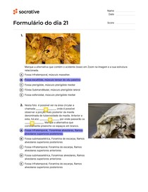 Teste sobre crânio ósseo - Perguntas e Respostas