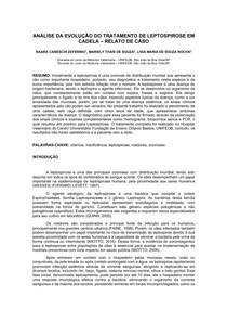 RELATO DE CASO - TRATAMENTO DE LEPTOSPIROSE EM CADELA