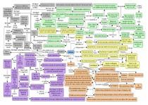 Cefaleias - mapa mental