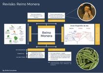 RESUMO - REINO MONERA I (CARACTERÍSTICAS GERAIS)