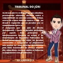 tribunal do júri