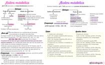 Alcalose e acidose metabólica