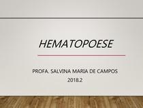 Aula 1 - Hematopoese 2018 2 - Copia
