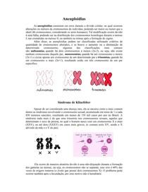 Aneuploidias - Síndrome de Klinefelter