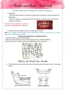 Anatomia Oclusal Funcional