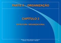 ESTRUTURA ORGANIZACIONAL