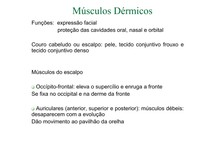 (MM_Dérmicos_e_do_pescoço_[Mod