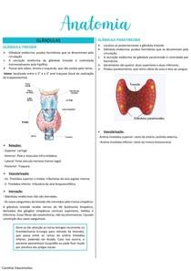 Glândula tireoide e paratireoide