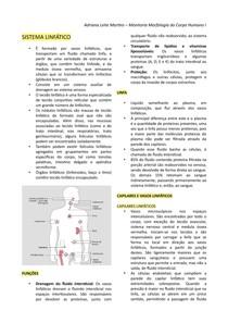 Sistema Linfático - Resumo