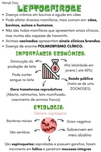 Leptospirose: etiologia, epidemiologia, patogenia, tratamento e profilaxia.