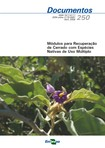 Modulos-para-recuperacao-de-Cerrado-com-especies-nativas-de-uso-multiplo