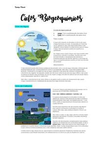 Ciclos Biogeoquímicos