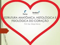 20170906185737 Estrutura Anatômica Histológica E Fisiológica
