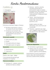 Microbiologia: Pseudomonas spp
