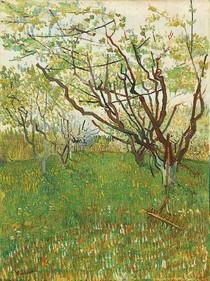 Vincent Willem van Gogh-pomar-em-flor-Green