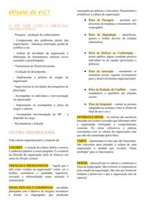 RESUMO DE PSICOLOGIA ORGANIZACIONAL E DO TRABALHO