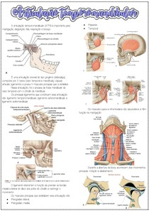 Anatomia da articulação temporomandibular (ATM)