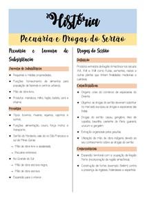 RESUMO DE PECUÁRIA E DROGAS DO SERTÃO