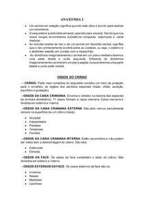 RESUMO DE OSTEOLOGIA - ANATOMIA VETERINÁRIA