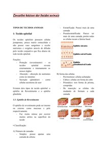 Tecidos animais: conceitos básicos