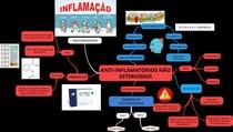 ANTI-INFLAMATÓRIOS NÃO ESTEROIDAIS (1)