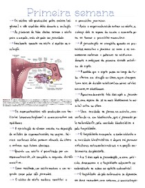 Resumo - Primeira semana do desenvolvimento embrionário