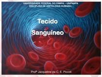 Tec. Sanguineo (histologia)