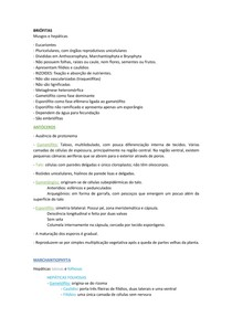 Resumo | Briófitas