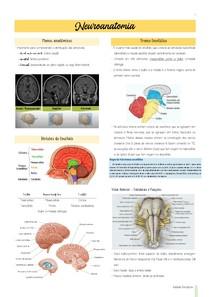 Resumo II - Neuroanatomia