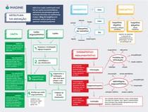 Mapa Mental Como Escrever Uma Redação (Imaginie)