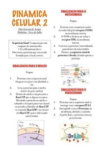 Dinamica Celular 2
