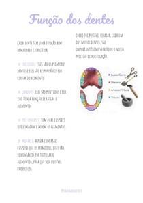 Função dos dentes