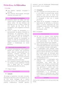 Metabolismo da Bilirrubina - AC
