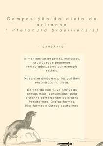 Ariranha ( Pteronura brasiliensis) -Dieta