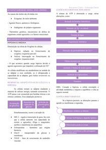 Resumo de Patologia Geral - Etiopatogênese/Degenerações/Diferenciação/Morte Celular