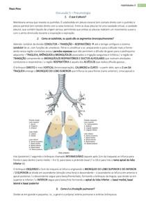 Semiologia do Sistema Respiratório - Anatomia, Sinais e Sintomas...