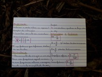 Fenômenos Ondulatórios 2 - Física