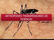 artrópodes transmissores