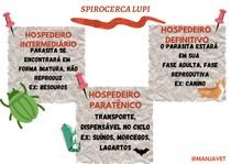 SPIROCERCA LUPI - HOSPEDEIROS
