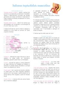 Patologias do sistema reprodutor masculino - Parte II