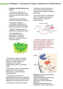 Complexo de golgi, Lisossomos e Mitocôndrias.